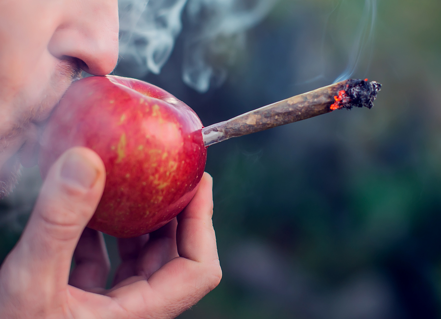 DIY Apple One-Hitter: How to Make A Homemade Cannabis Pipe