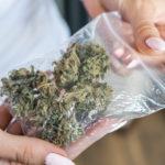 best medical marijuana strains where to buy