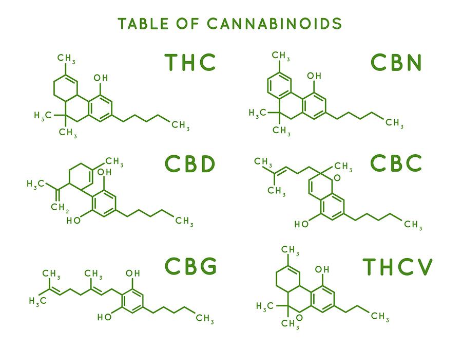 CBG: what is cannabigerol?