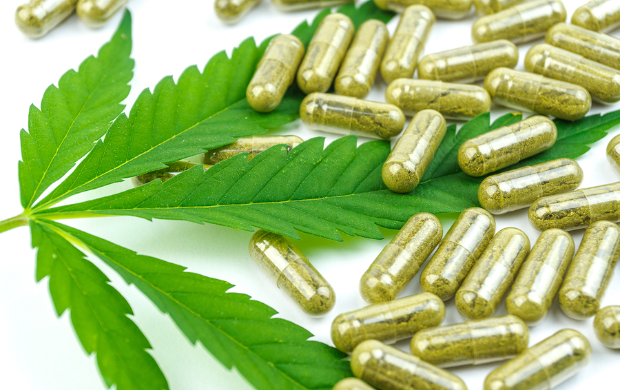 CBD Pills: How to Make Your Own Cannabis Capsules (Recipe)
