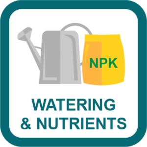 Cannabis Watering & Nutrient Guide